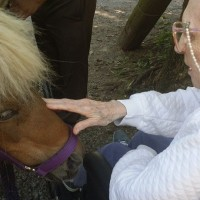3030 Park_Equine Therapy